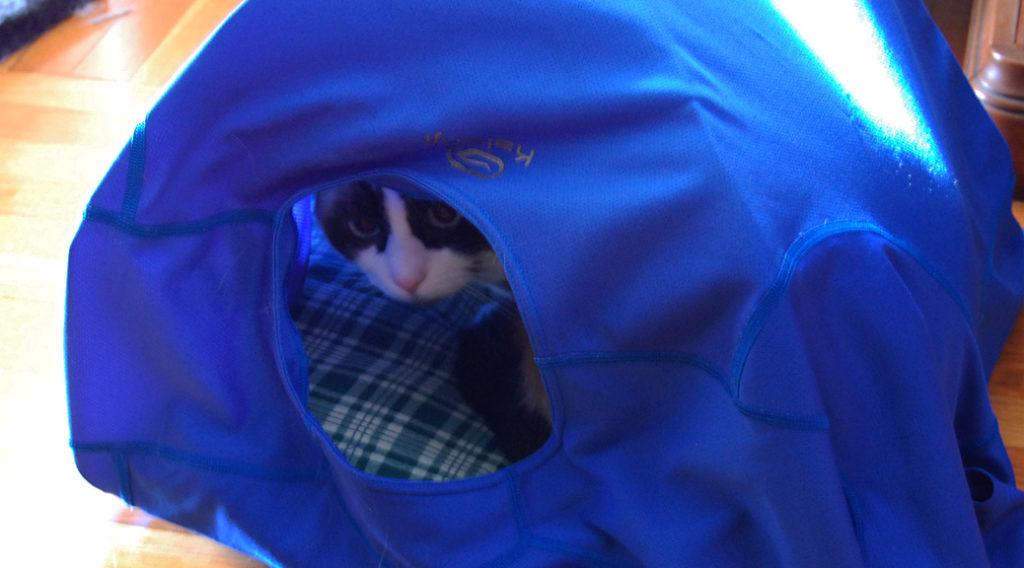 Come fare una cuccia per gatti